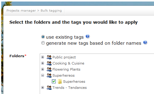select_folders_and_tags_you_wouldl_ike_to_apply_for_bulk_tagging.png