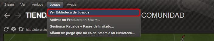 0028_spa_steam_view_games_library.jpg